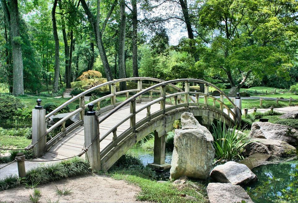 usługi ogrodnicze warszawa, projekt ogrodu warszawa